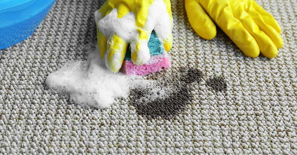 شستشوی لکه روغن و چربی موکت با شامپو فرش
